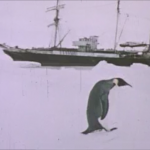 Shackleton's Banjo thumbnail (penguin with ship)
