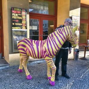 Me with the ZEBRA zebra