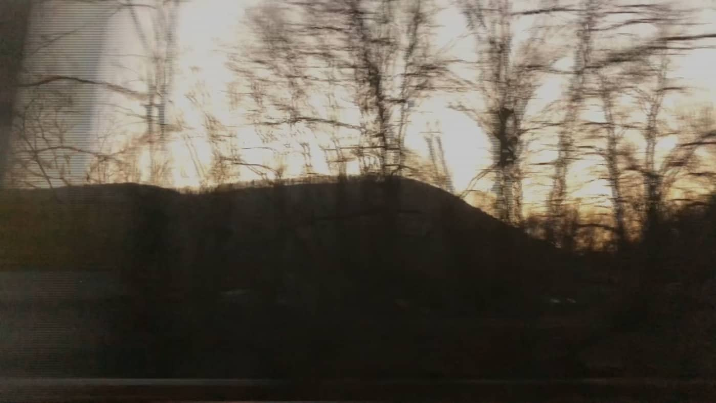 "still from the video ""winter trees"""