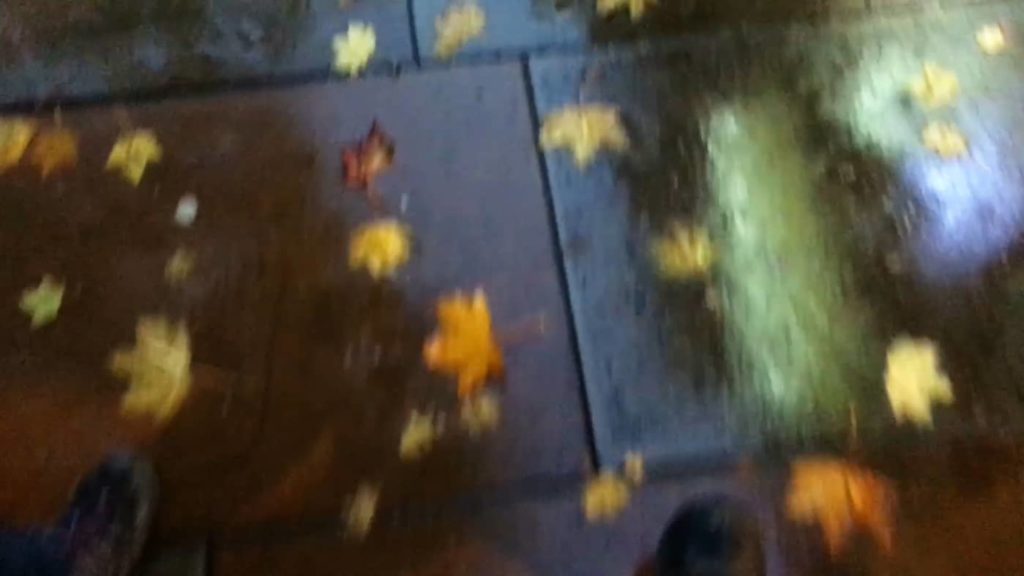 still from Autumn Metropolist showing fallen leaves on a sidewalk